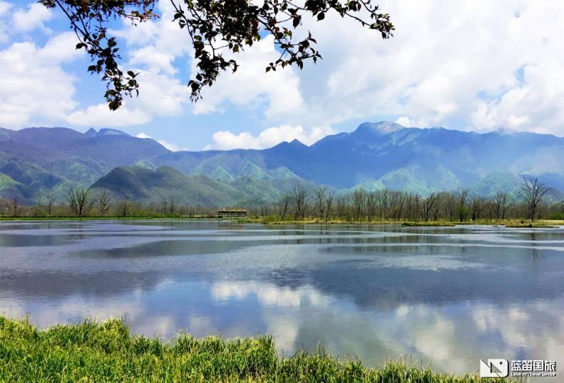 _0003_D8大九湖湿地